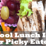School Lunch Idea For Picky Eaters